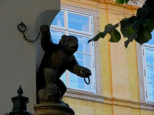 Bear in Ungelt in Prague